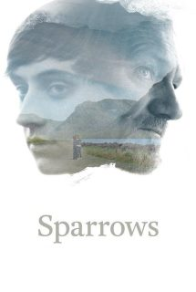 Sparrows (Gorriones) 2015
