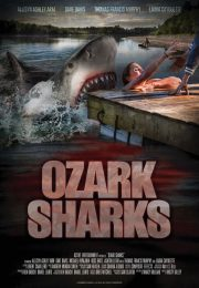 Summer shark attack 2655 poster.jpg