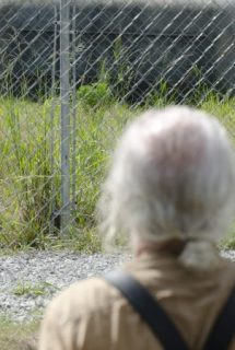 Imagen The Walking Dead HDTV Spanish Online Torrent 4x8