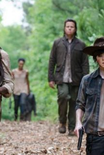 Imagen The Walking Dead HDTV Spanish Online Torrent 5x2