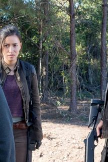 Imagen The Walking Dead HDTV Spanish Online Torrent 6x14